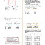 Tandem Fen Bilimleri Fenomeni 8. Sınıf